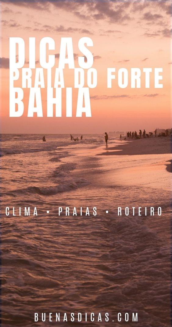 Dicas de Praia do Forte – Guia de viagem