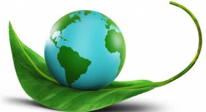 La importancia de los certificados de garantía en una empresa de limpieza en Madrid