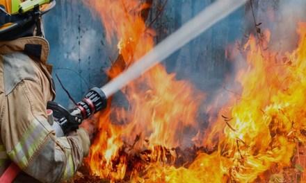 ¿Qué dice el Código penal si se provoca un incendio forestal?