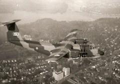 image of de Havilland Buffalo