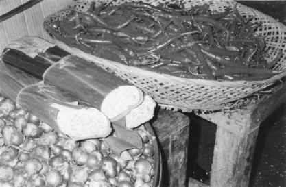 The History Of Tempeh In Indonesia And The United States Beverage Fermentation