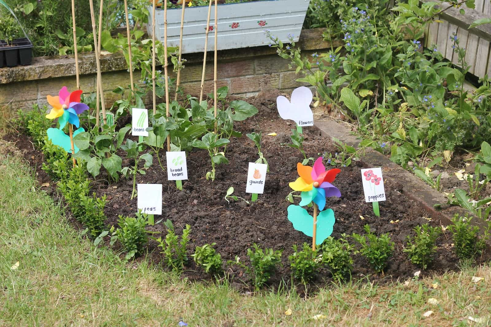 Creating A Kid Friendly Garden
