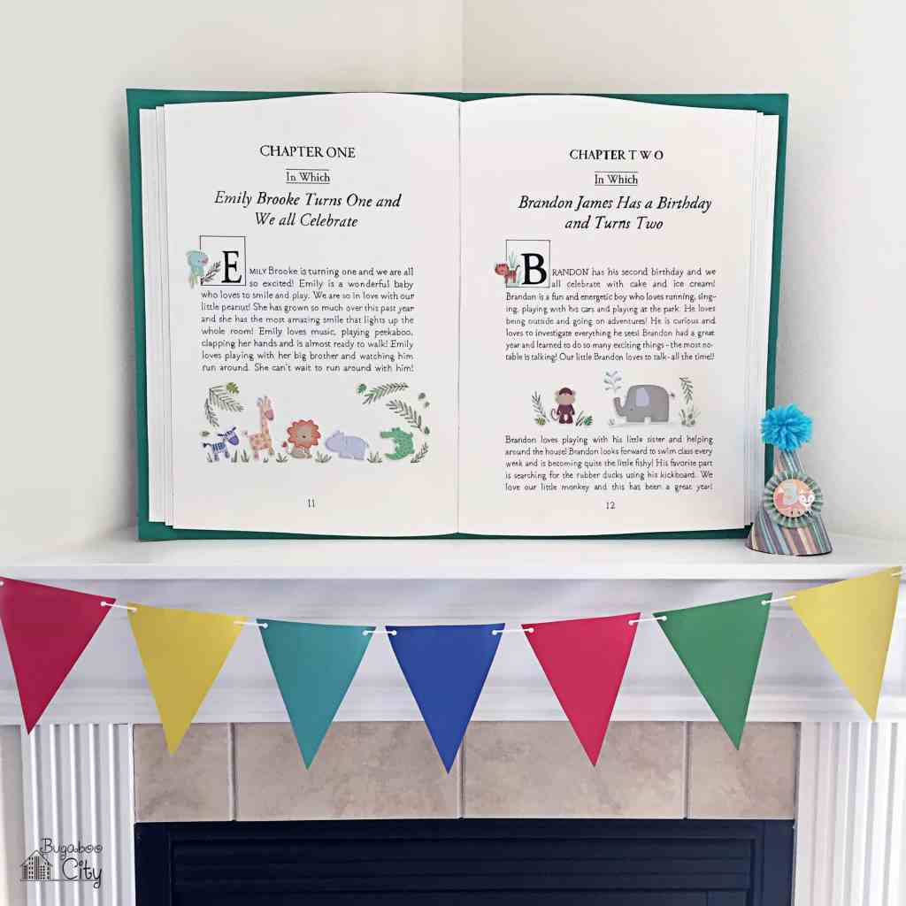 BugabooCity Storybook Party Backdrop
