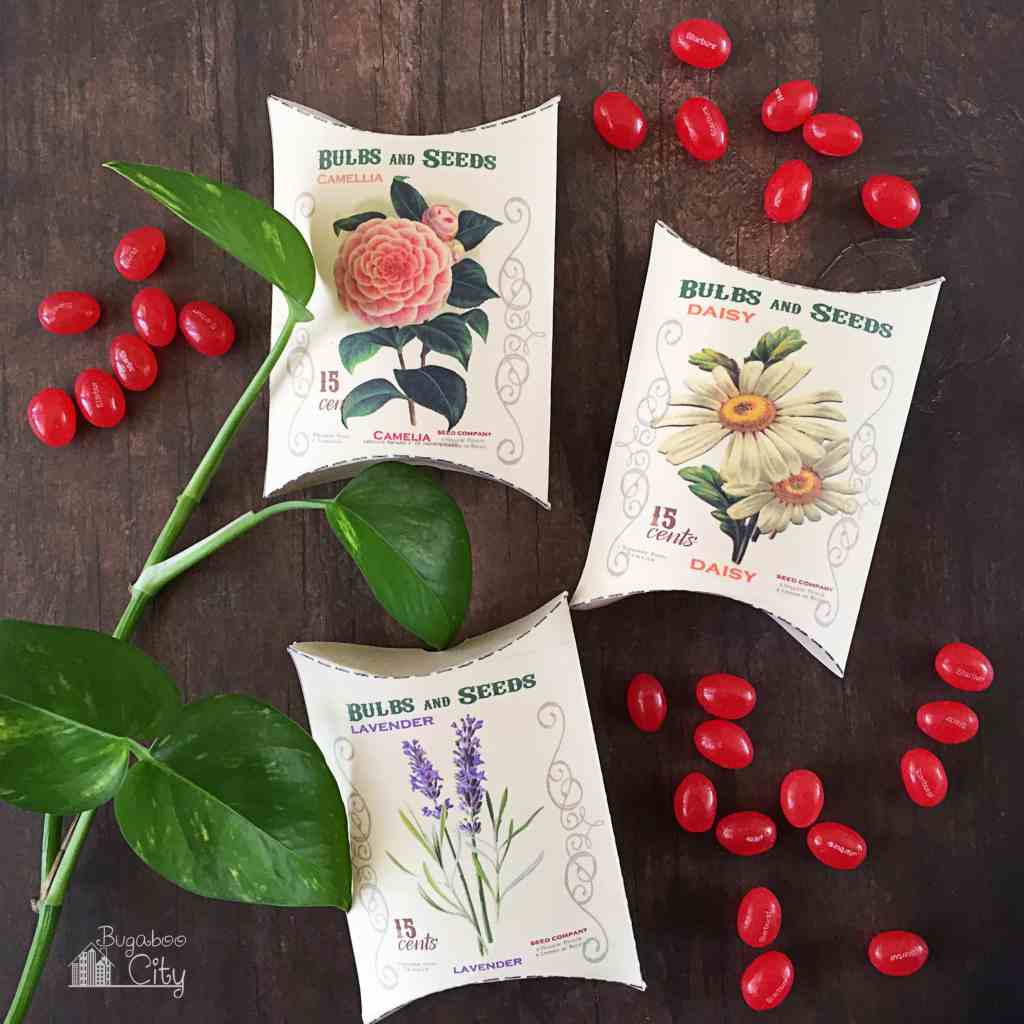 Seed Packet Treat Boxes