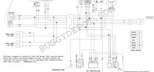 Dazon Raider Classic  Wiring Diagram  Buggy Depot Technical Center