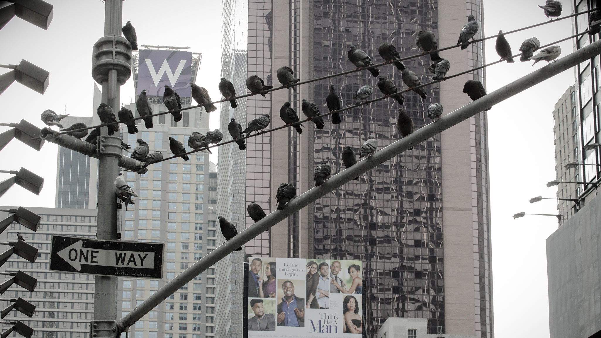 A Time Square Gathering