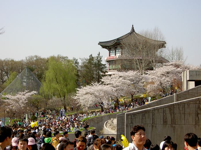 Spring at Seoul Children's Grand Park