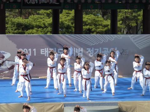 Young taekwondo masters