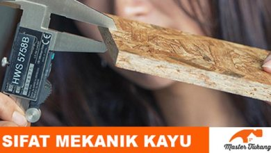 Photo of Mengenal Sifat Mekanik Kayu