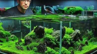 Photo of Aquascape Sebagai Elemen Penunjang Interior Hunian