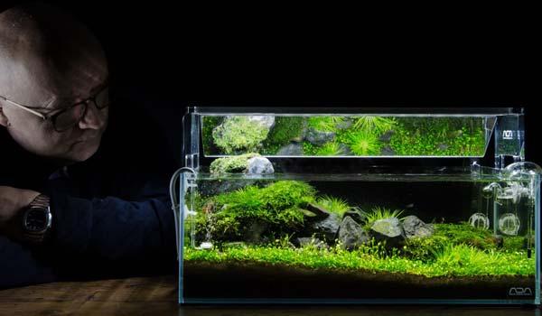 Elemen dasar AquaScape