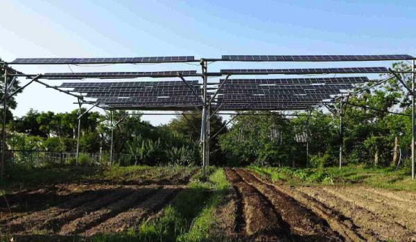 Manfaat Panel Surya untuk Pertanian kebun apv