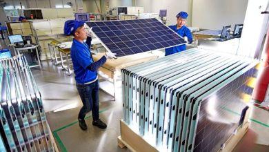 panel surya trina solar 670 watt