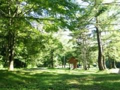 七入オートキャンプ場のキャンプサイト
