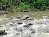 実川の流れ