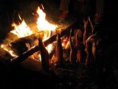 焚き火でイワナを焼く
