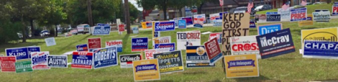 A mass of political yard signs