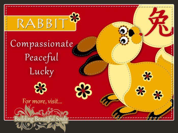 Chinese Zodiac Rabbit | Year of the Rabbit | Funny Horoscopes & Funny  Zodiac Signs