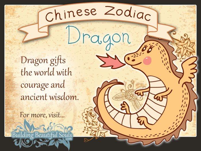 Chinese Zodiac Dragon Child Personality & Traits | Chinese Zodiac for Kids