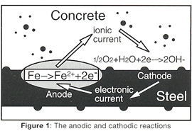 Fig 1: The anodic-cathodic reactions