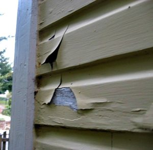Chipping and Peeling Paint