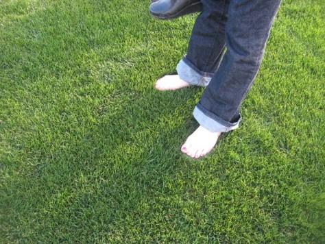 Plushy Grass Starting SawDust_Girl