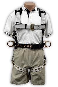 Harness Removable Belt Rated to 400lbs