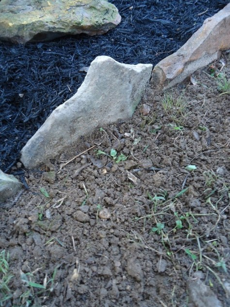 Close Up Stone Border Edging Tilled Earth
