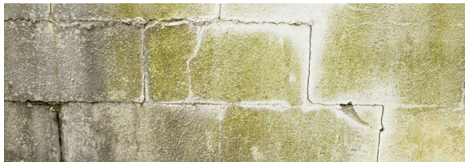 Benefits of Waterproofing :: Block Wall Foundation Crack image via Gillece Services