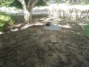 Fall DIY :: Vinca Patch Applying Compost Tea and Rope Swing