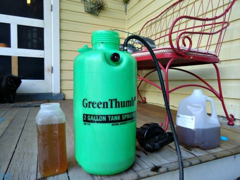 compost tea and a pump sprayer