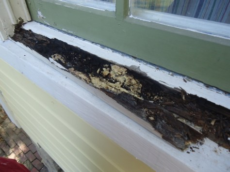 rotted crumbling wood at wood window sill dug out