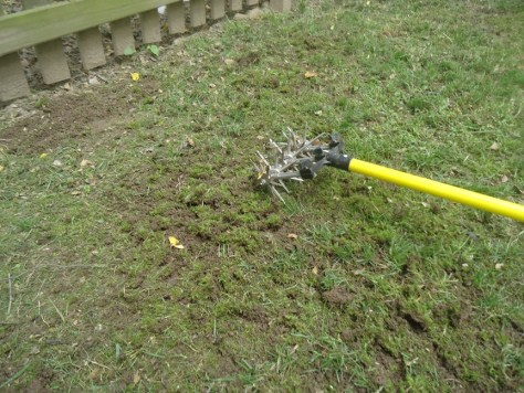 Cultivator to aerate before overseeding
