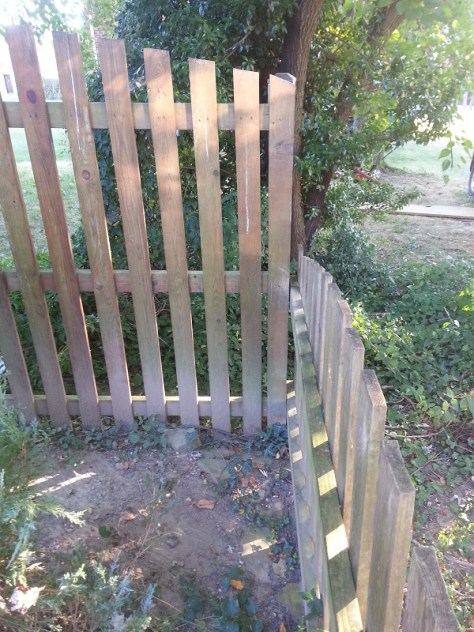 cedar fence to pressure wash