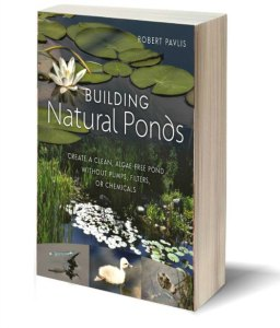 3D pond book book cover image 500