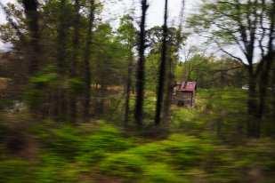 Shack (North Carolina, Spring 2008, Palmetto Route)