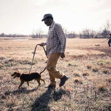 Dog Trials, La Vergne, TN