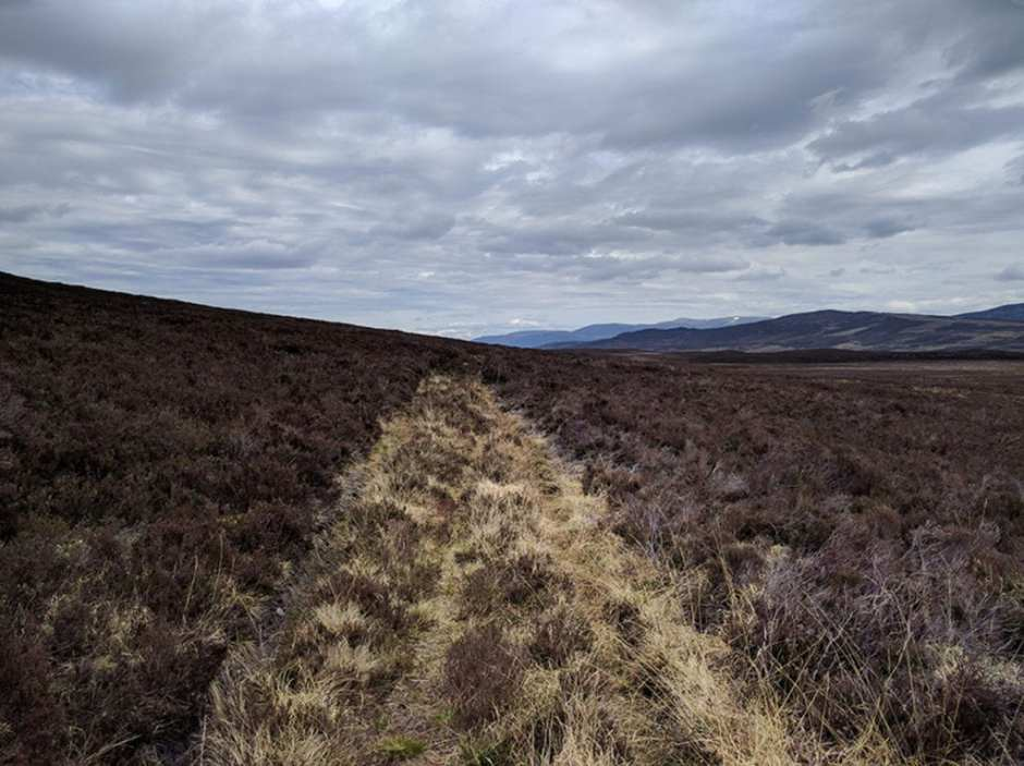 Part bushwacking, part walking over the ghosts of old trails like this one across the Nuide Moss moors. Like most of my journey, I had it completely to myself. A gorgeous day.