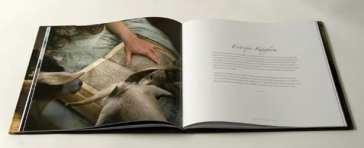Tom Chambers | Entropic Kingdom Book