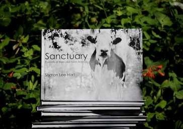 Sanctuary – Portraits of Rescued Farm Animals