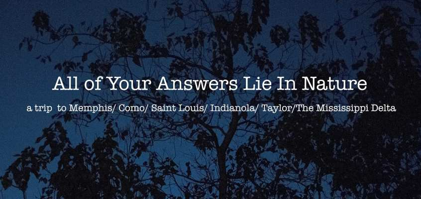All Your Answers Lie In Nature | Bea Chauvin