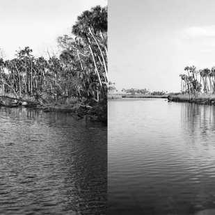 Downriver 2004 & 2015