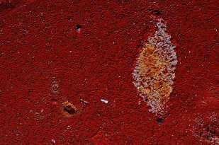 Hemoglobin ©Kent Putnam