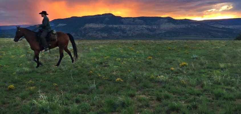 Bill Curry Interview | Kurorte Photography and Wellness Retreat July 10-15, 2018