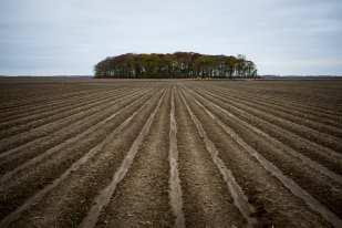 Plowed Field, Goldman, LA ©Forest McMullin