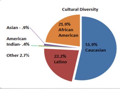 City of Racine cultural diversity