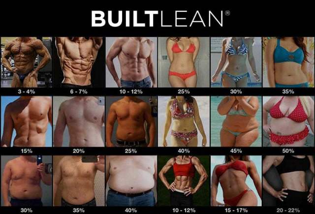 Image result for body fat