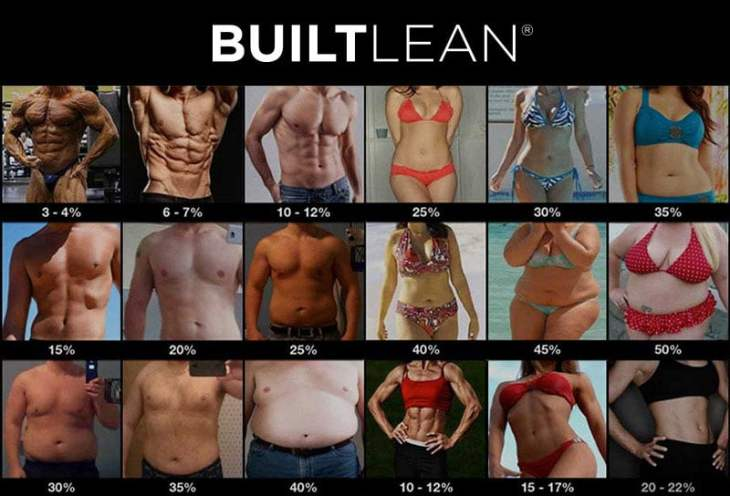 Ideal Body Fat Percentage Chart1 Ideal Body Fat Percentage Chart: How Lean Should You Be?