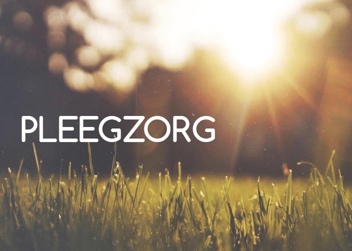 PLEEGZORG IX – Huiswerk