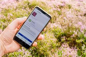 Lees meer over het artikel ObsIdentify: Hoe een app alle veldgidsen overbodig maakt